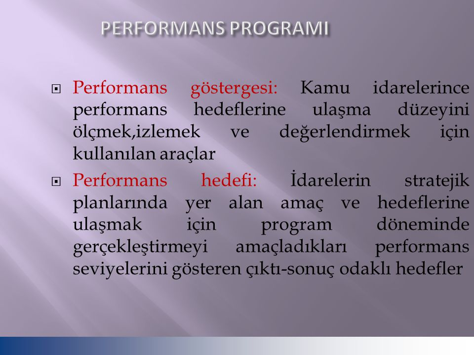 PERFORMANS PROGRAMI