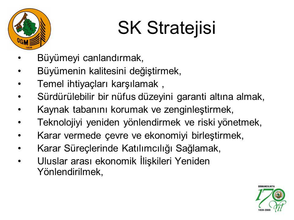 SK Stratejisi Büyümeyi canlandırmak, Büyümenin kalitesini değiştirmek,
