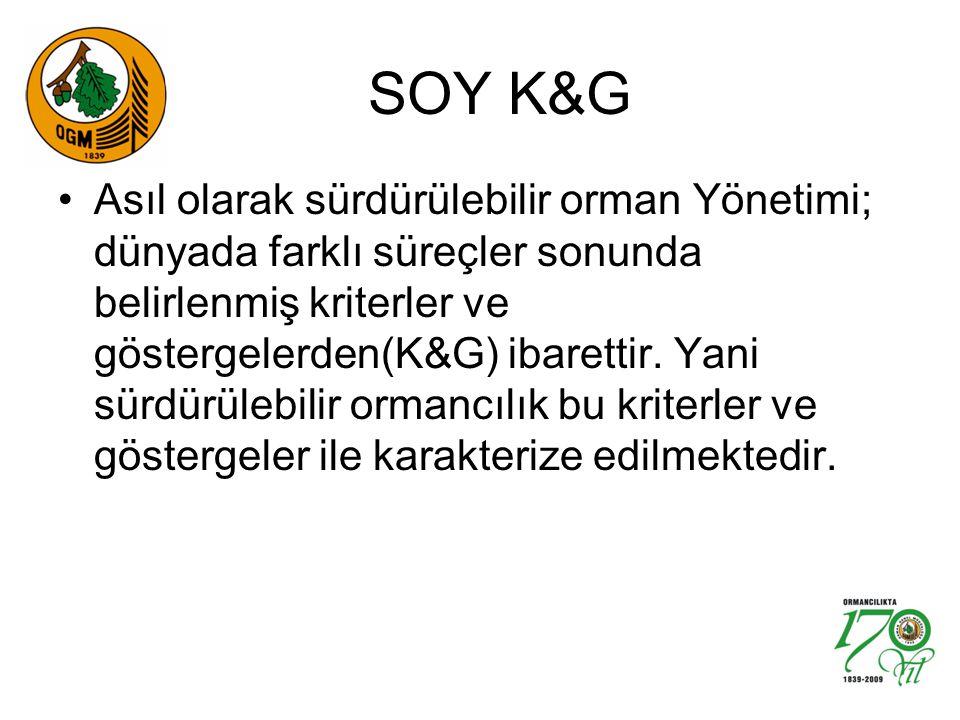 SOY K&G