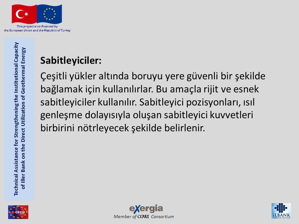 Sabitleyiciler: