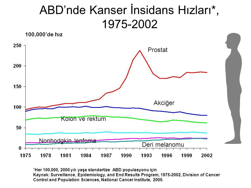 ABD'nde Kanser İnsidans Hızları*, 1975-2002