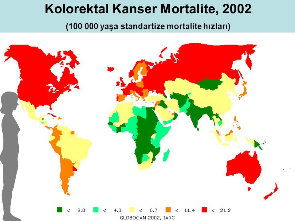 Kolorektal Kanser Mortalite, 2002