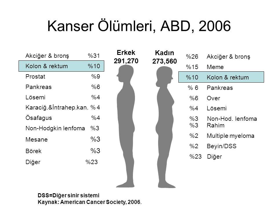 Kanser Ölümleri, ABD, 2006 Erkek 291,270 Kadın 273,560
