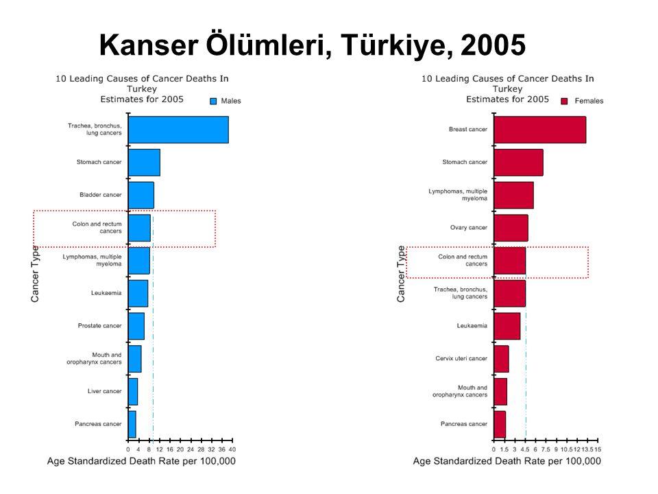 Kanser Ölümleri, Türkiye, 2005