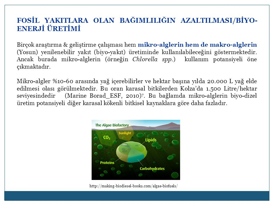 FOSİL YAKITLARA OLAN BAĞIMLILIĞIN AZALTILMASI/BİYO-ENERJİ ÜRETİMİ