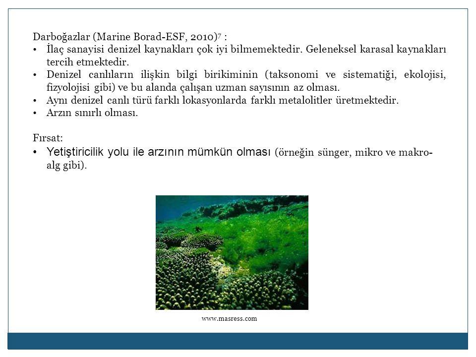 Darboğazlar (Marine Borad-ESF, 2010)7 :