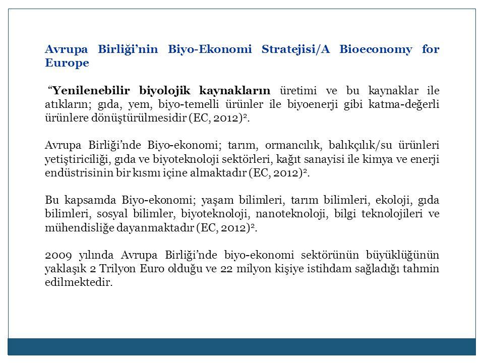 Avrupa Birliği'nin Biyo-Ekonomi Stratejisi/A Bioeconomy for Europe
