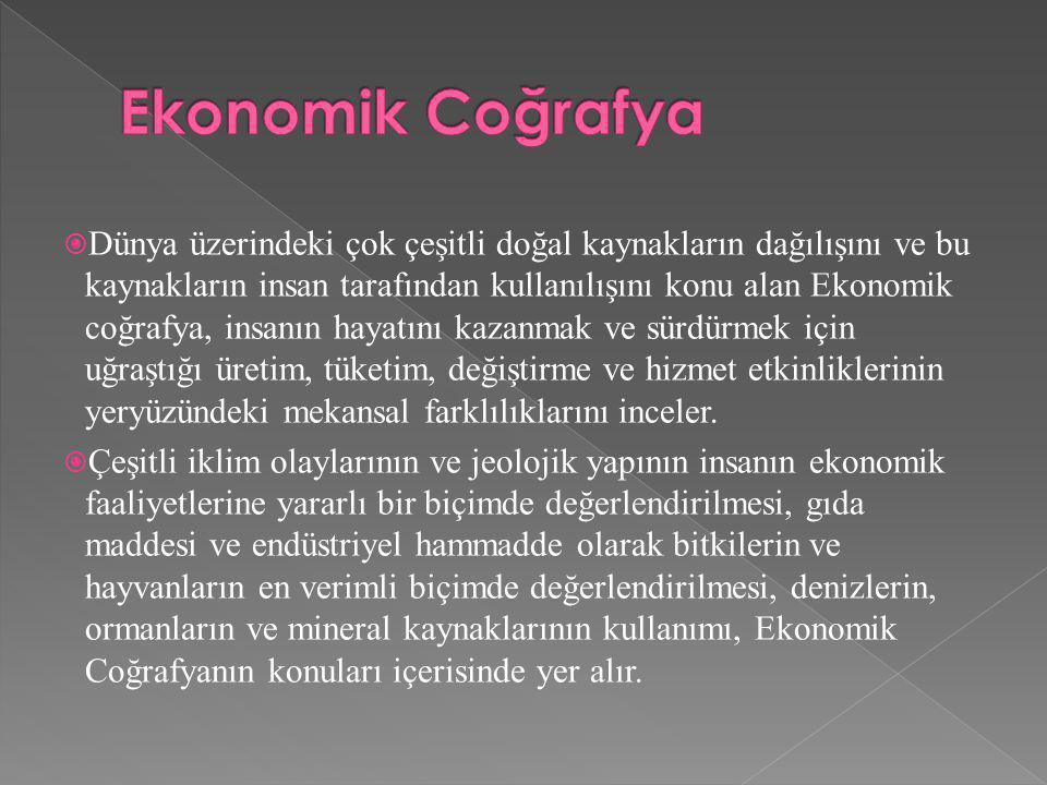 Ekonomik Coğrafya