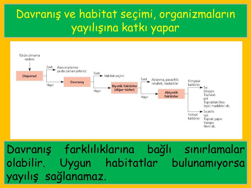 Davranış ve habitat seçimi, organizmaların yayılışına katkı yapar
