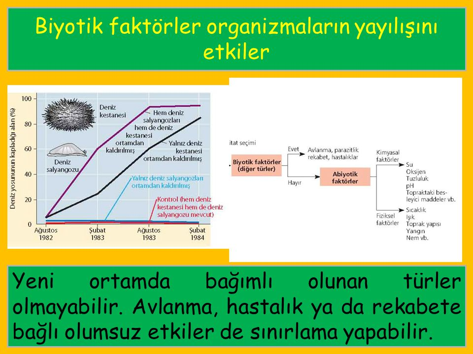 Biyotik faktörler organizmaların yayılışını etkiler