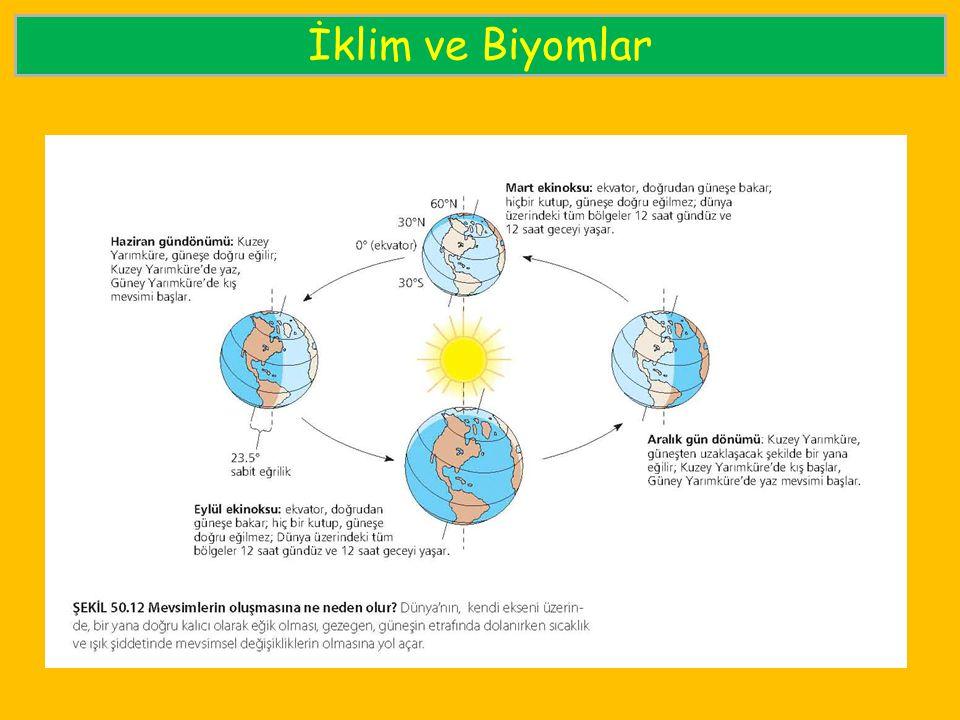 İklim ve Biyomlar
