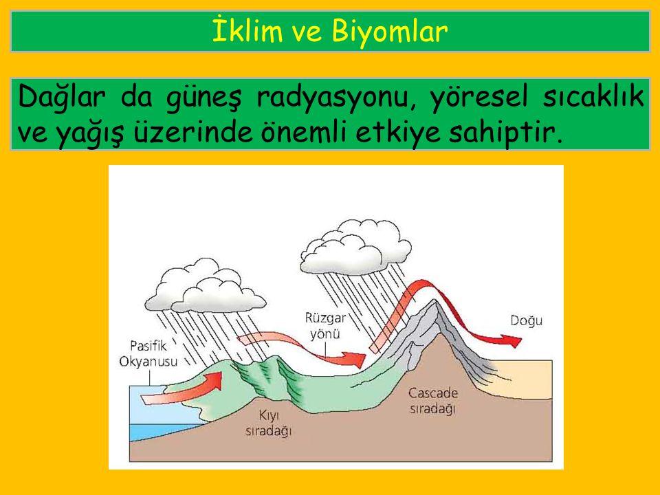 İklim ve Biyomlar Dağlar da güneş radyasyonu, yöresel sıcaklık ve yağış üzerinde önemli etkiye sahiptir.
