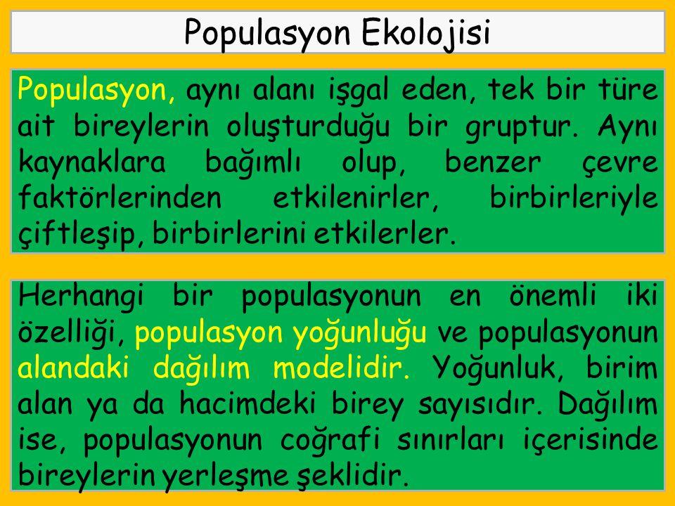 Populasyon Ekolojisi