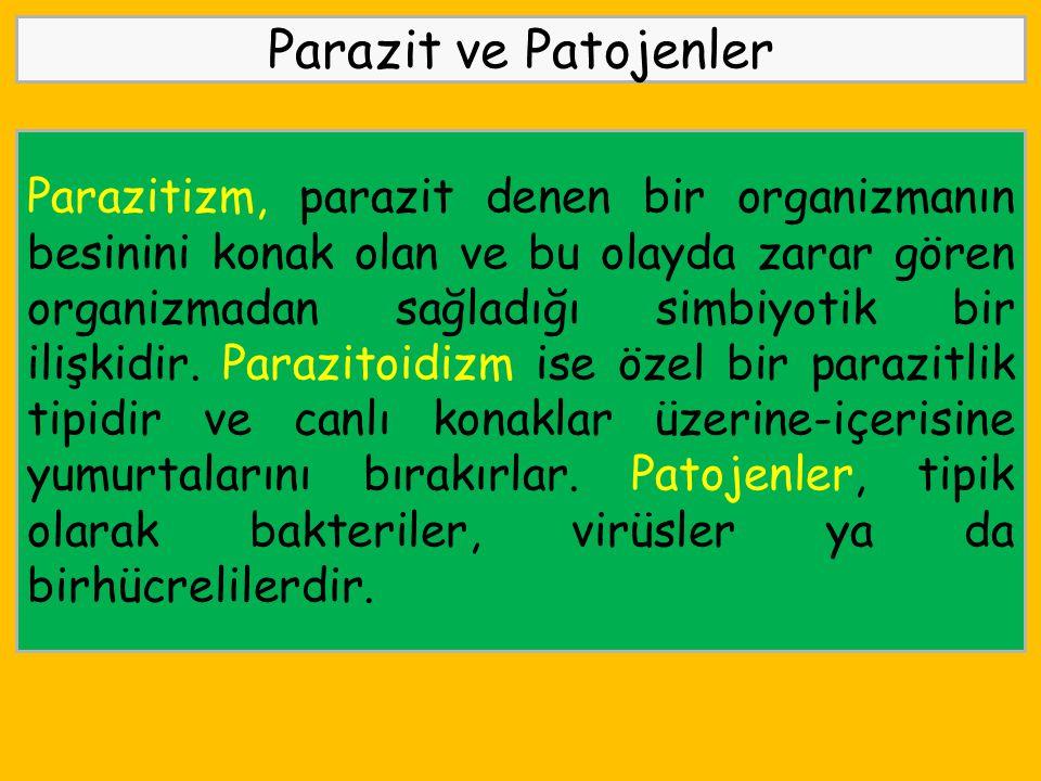 Parazit ve Patojenler
