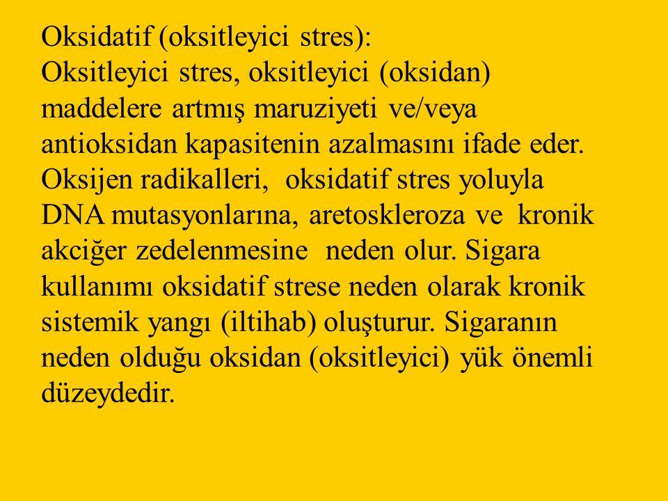 Oksidatif (oksitleyici stres):