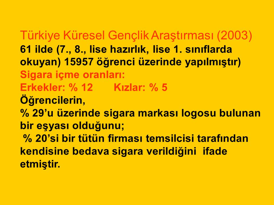 Türkiye Küresel Gençlik Araştırması (2003)