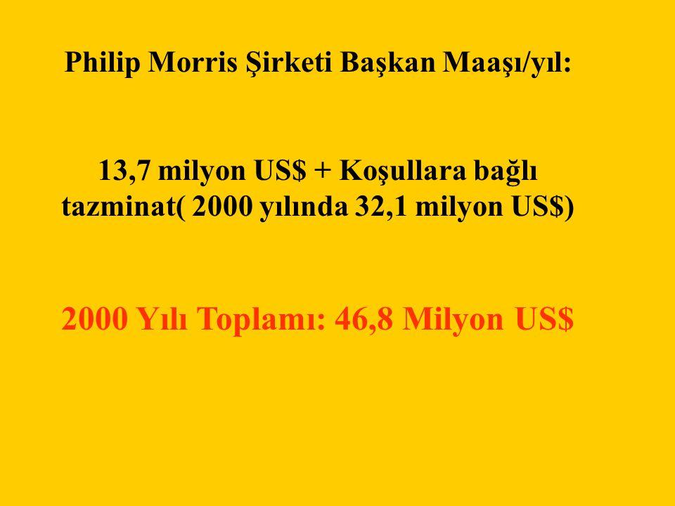 2000 Yılı Toplamı: 46,8 Milyon US$