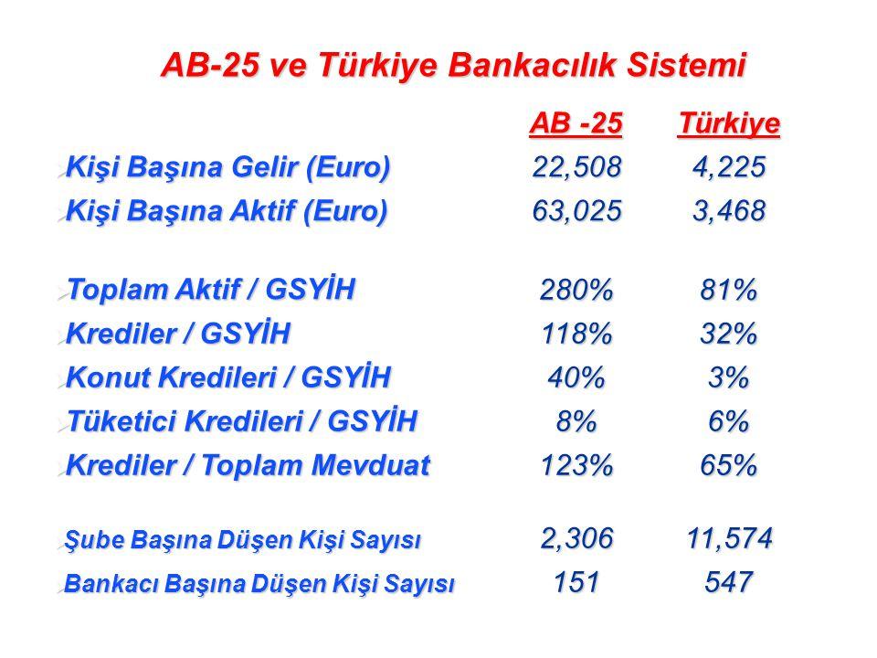 AB-25 ve Türkiye Bankacılık Sistemi