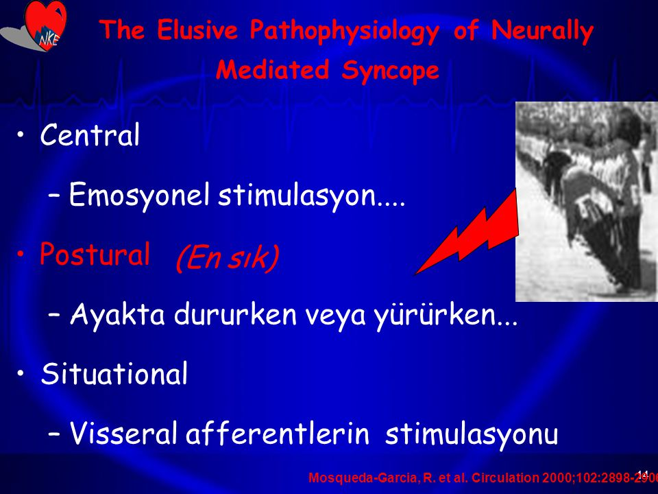 The Elusive Pathophysiology of Neurally Mediated Syncope