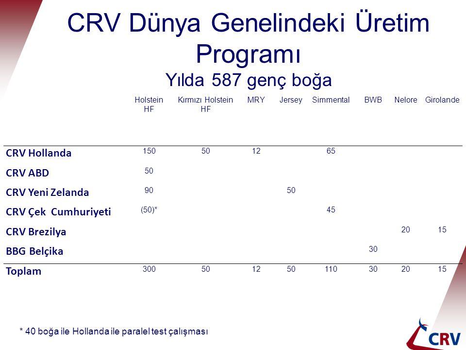 CRV Dünya Genelindeki Üretim Programı Yılda 587 genç boğa