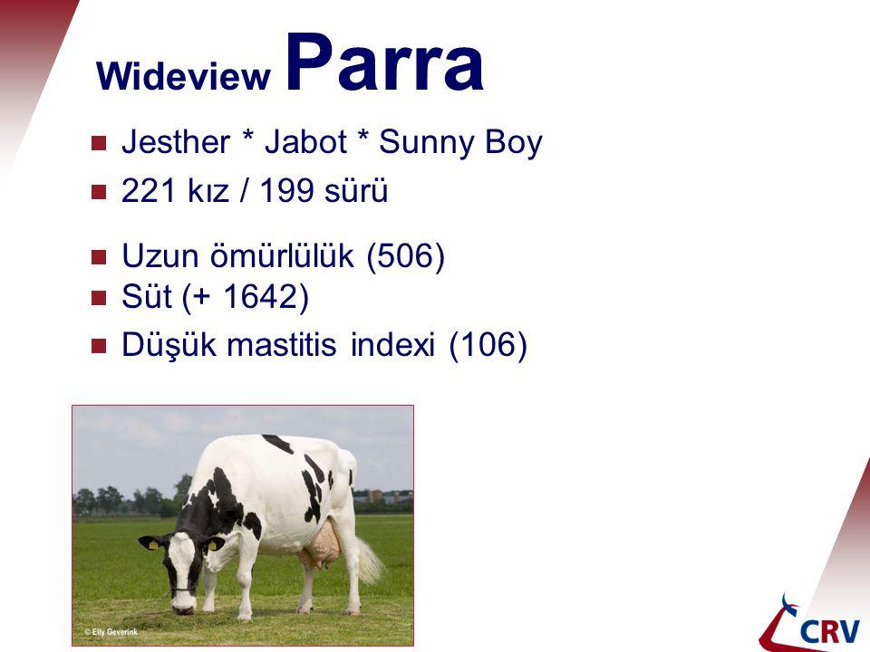 Wideview Parra Jesther * Jabot * Sunny Boy 221 kız / 199 sürü