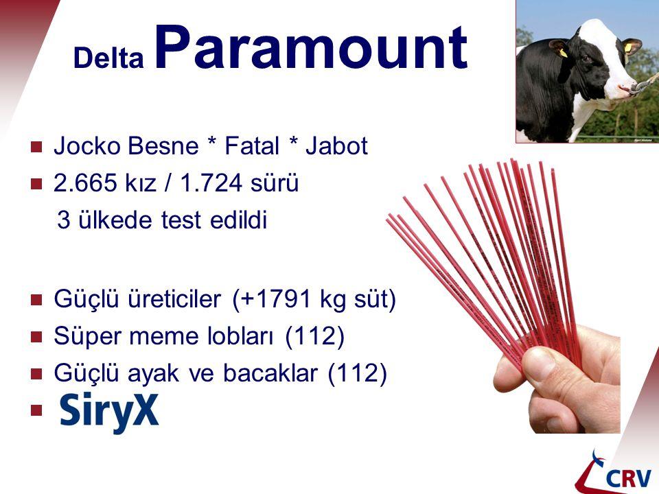 Delta Paramount Jocko Besne * Fatal * Jabot 2.665 kız / 1.724 sürü