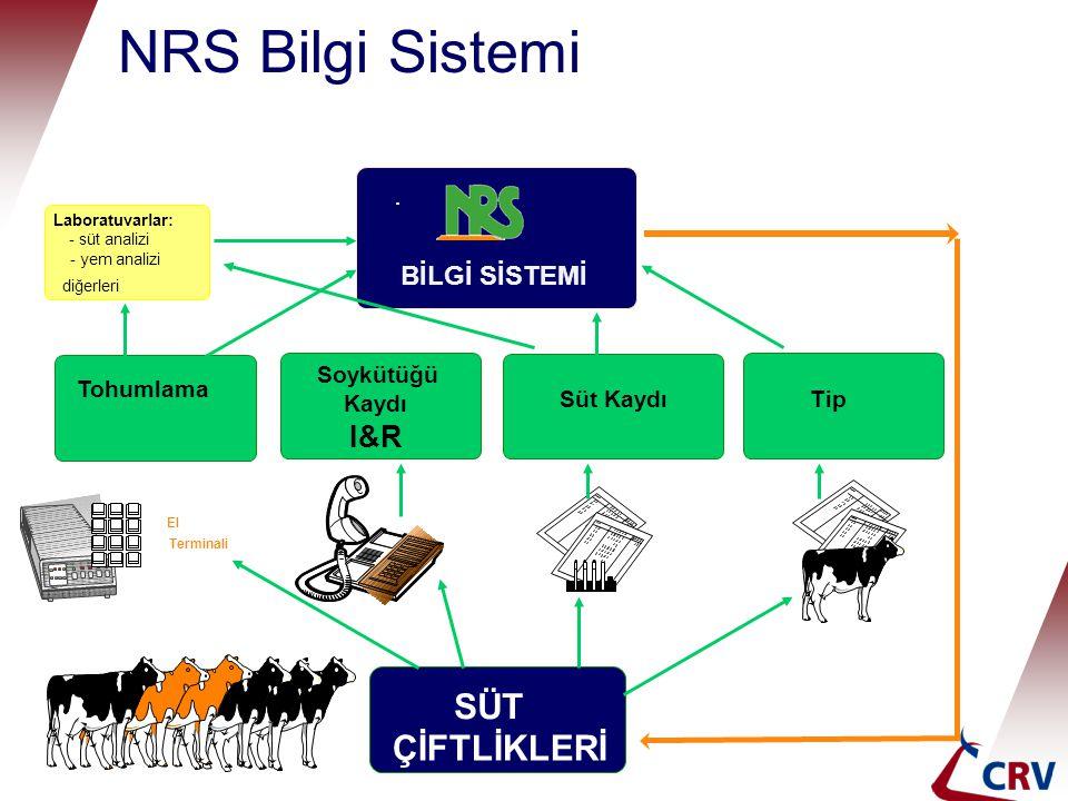 NRS Bilgi Sistemi SÜT ÇİFTLİKLERİ I&R BİLGİ SİSTEMİ Soykütüğü