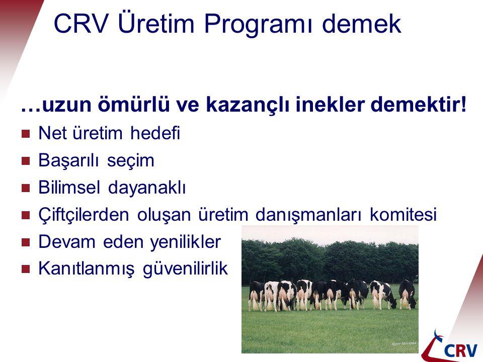 CRV Üretim Programı demek