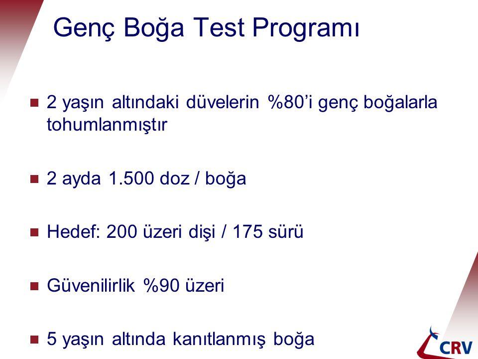 Genç Boğa Test Programı