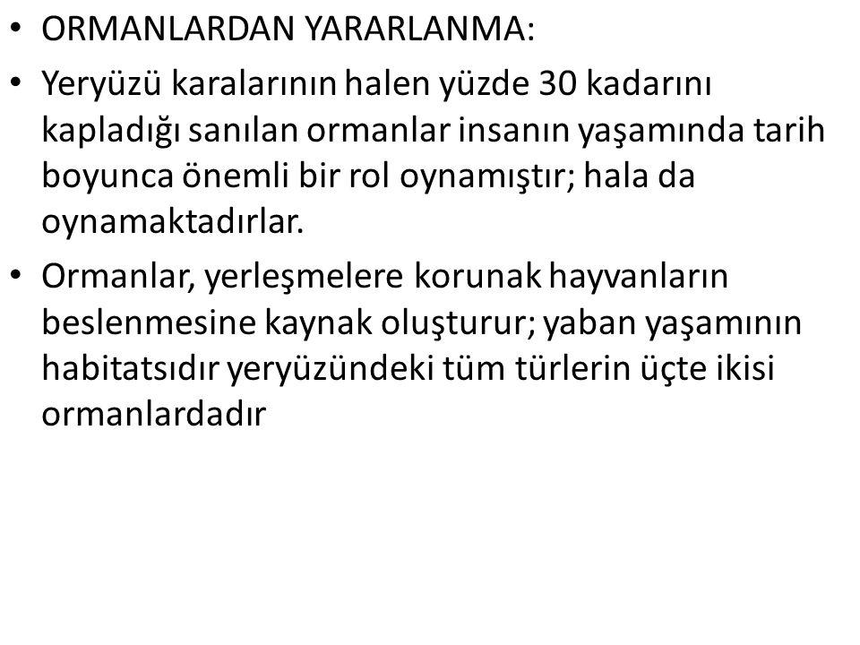 ORMANLARDAN YARARLANMA: