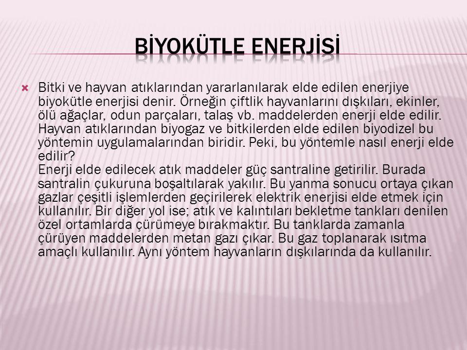 BİYOKÜTLE ENERJİSİ