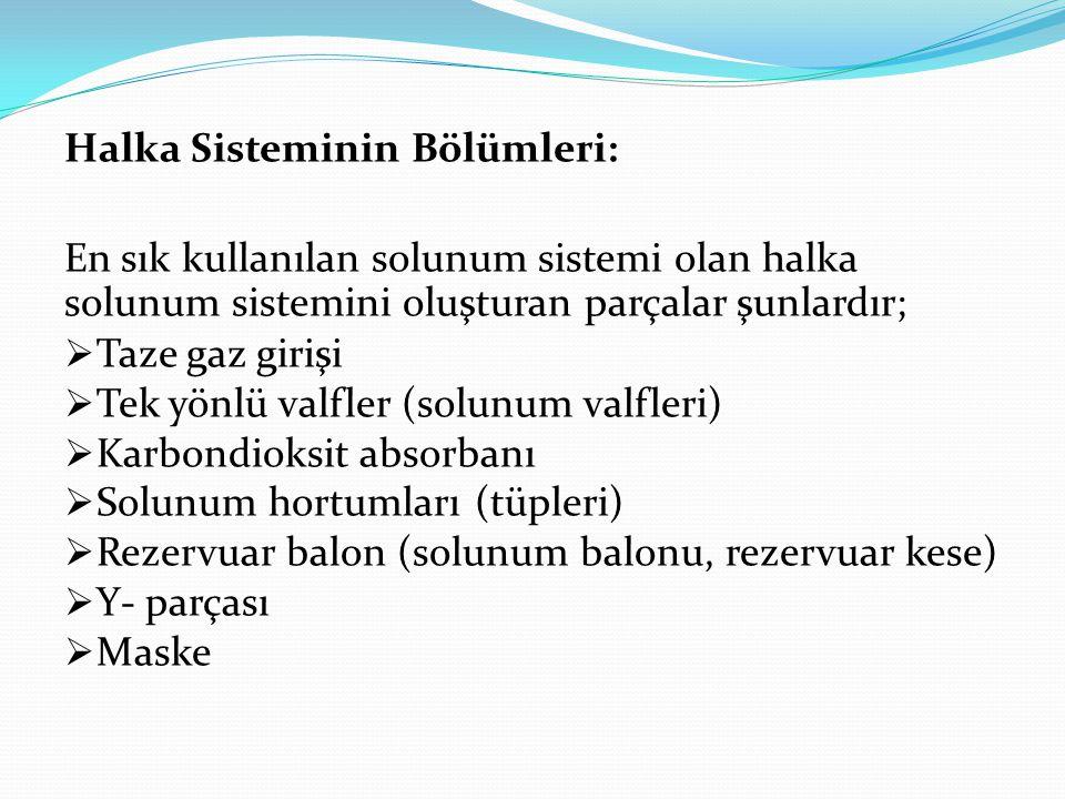 Halka Sisteminin Bölümleri: