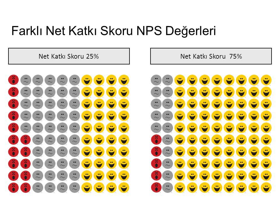 Farklı Net Katkı Skoru NPS Değerleri