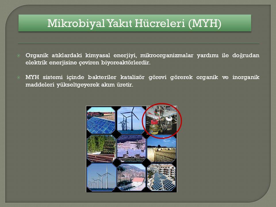 Mikrobiyal Yakıt Hücreleri (MYH)