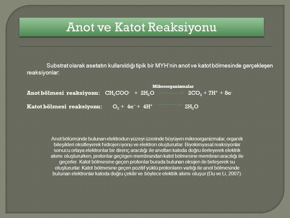Anot ve Katot Reaksiyonu