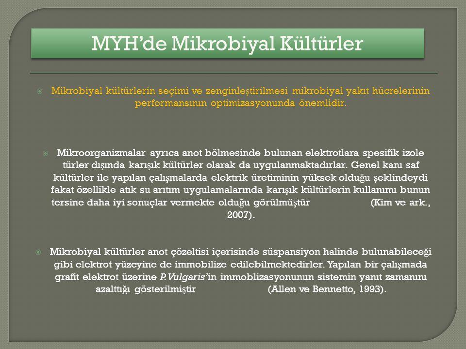 MYH'de Mikrobiyal Kültürler
