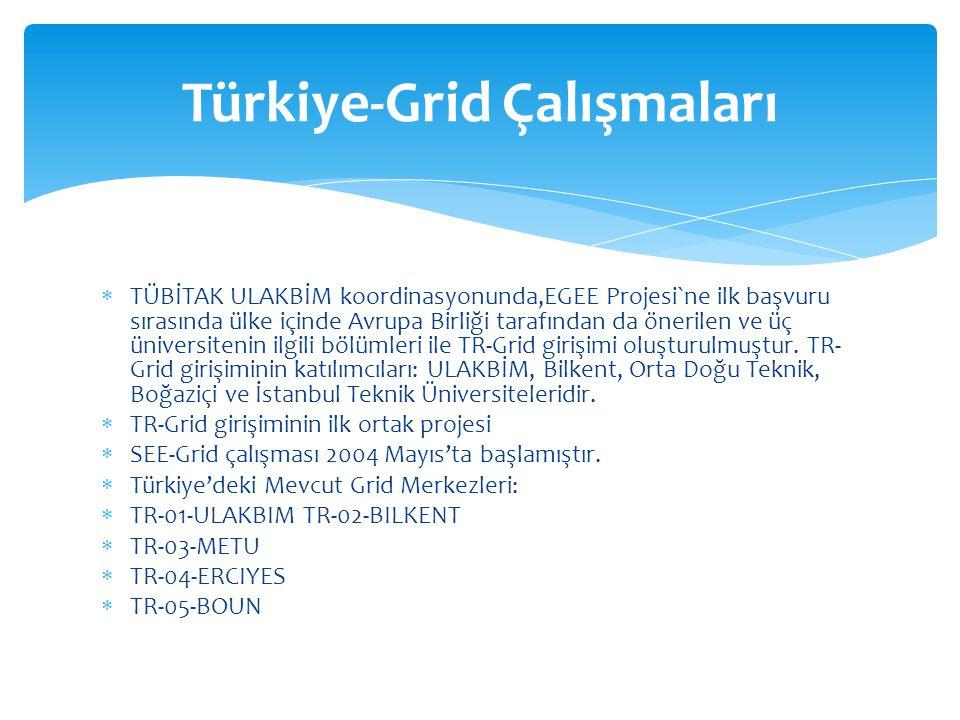 Türkiye-Grid Çalışmaları
