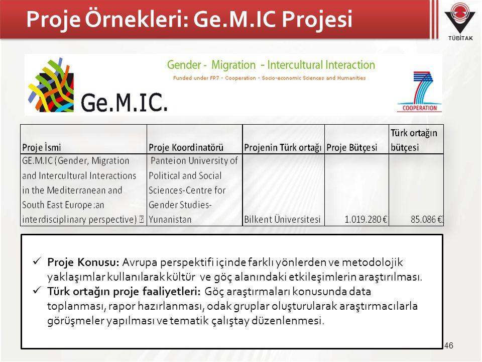 Proje Örnekleri: Ge.M.IC Projesi