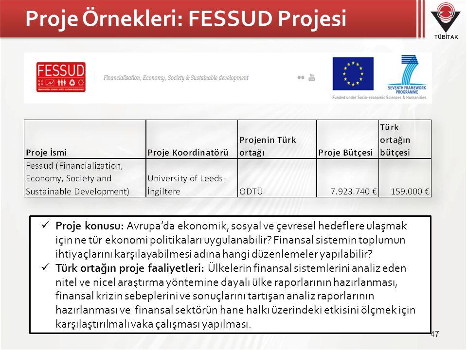 Proje Örnekleri: FESSUD Projesi