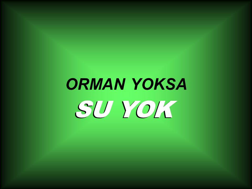ORMAN YOKSA SU YOK