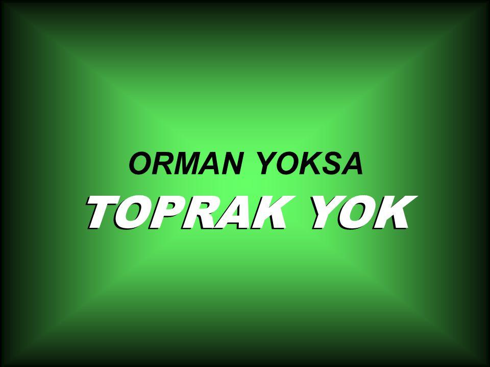 ORMAN YOKSA TOPRAK YOK