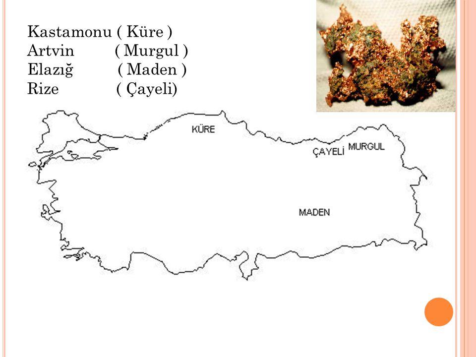 Kastamonu ( Küre ) Artvin ( Murgul ) Elazığ ( Maden ) Rize ( Çayeli)