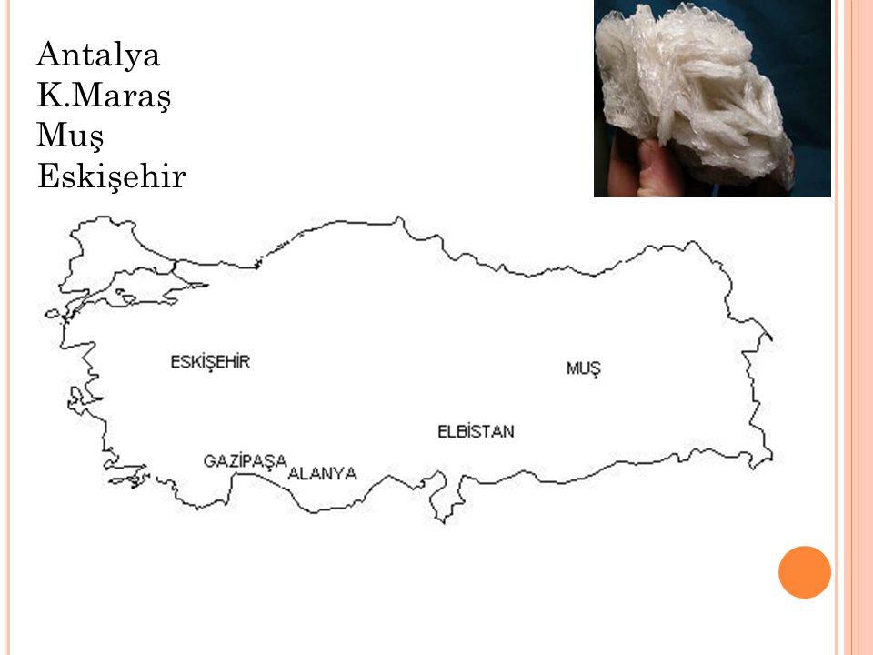 Antalya K.Maraş Muş Eskişehir