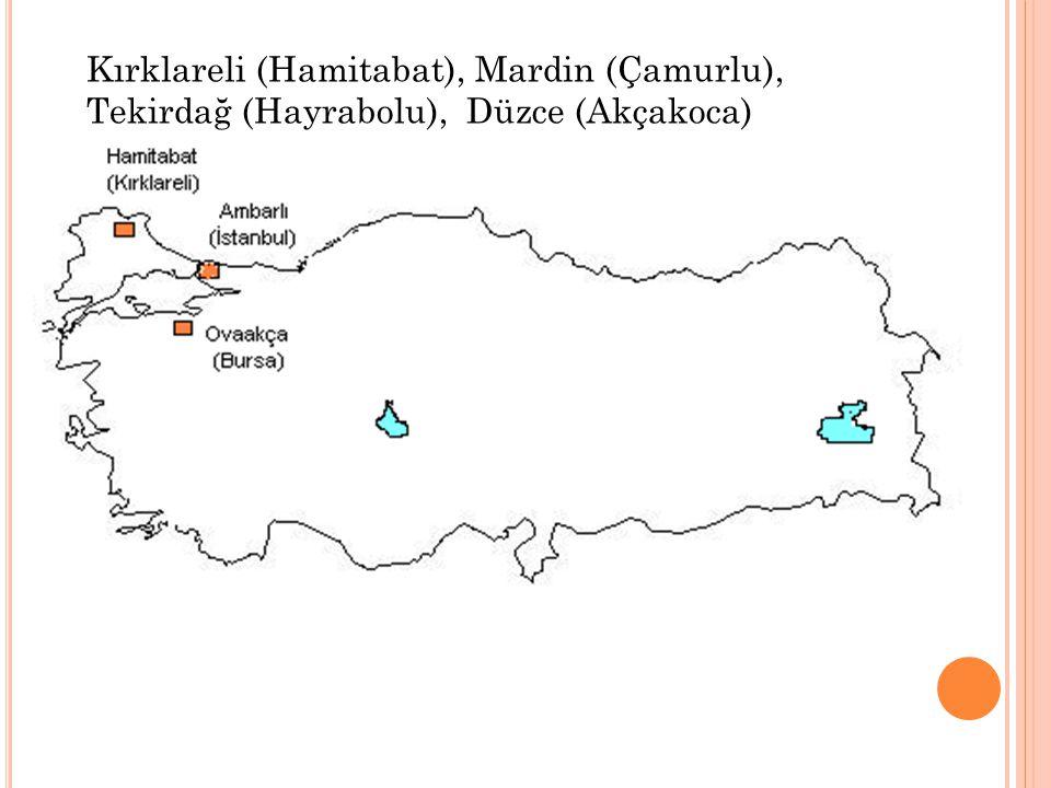 Kırklareli (Hamitabat), Mardin (Çamurlu),
