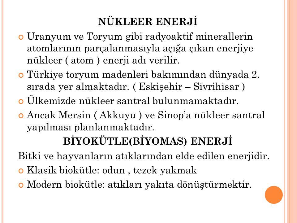BİYOKÜTLE(BİYOMAS) ENERJİ