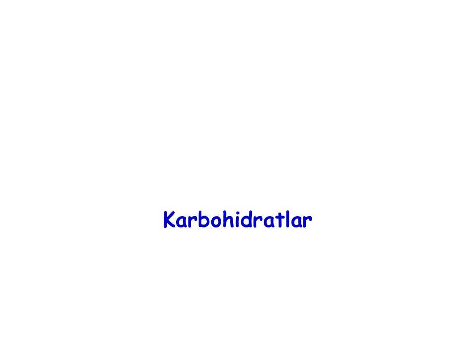 Karbohidratlar