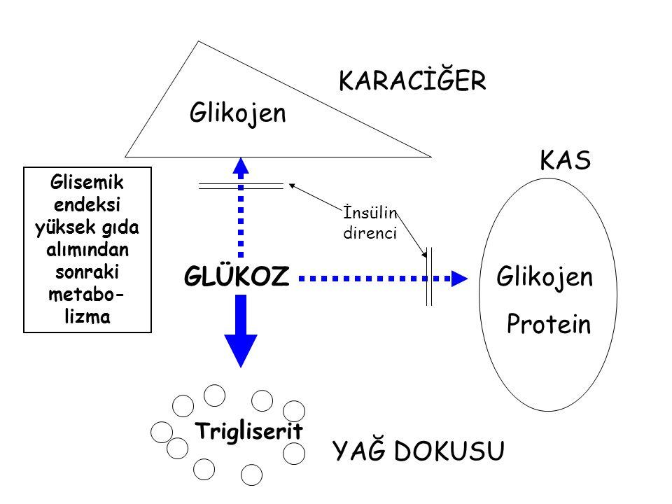 Glisemik endeksi yüksek gıda alımından sonraki metabo-lizma