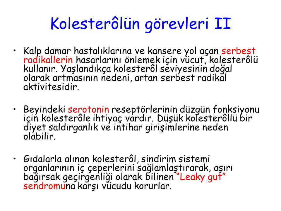 Kolesterôlün görevleri II