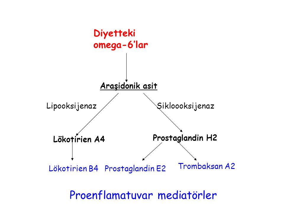Proenflamatuvar mediatörler