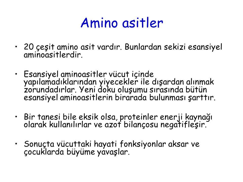 Amino asitler 20 çeşit amino asit vardır. Bunlardan sekizi esansiyel aminoasitlerdir.